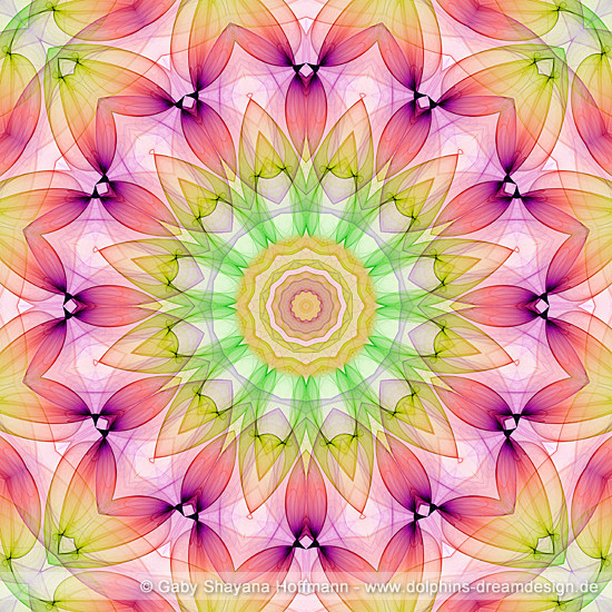 Spirit Mandala - Herzensenergie