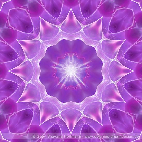 Spirit Mandala - Violette Flamme