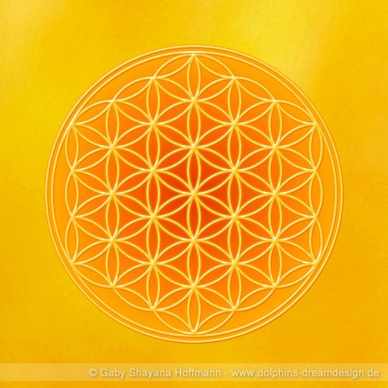 Blume des Lebens - Solarplexus