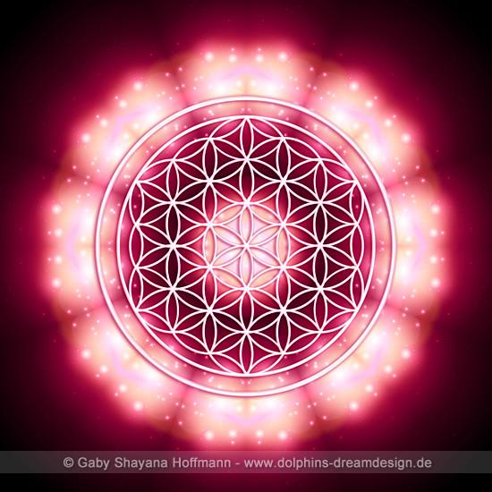 Blume des Lebens - Es werde Licht