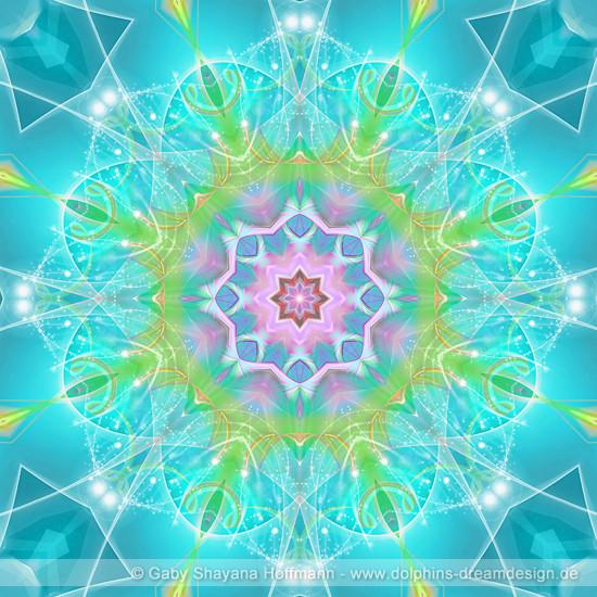 Spirit Mandala - Delfinfreude