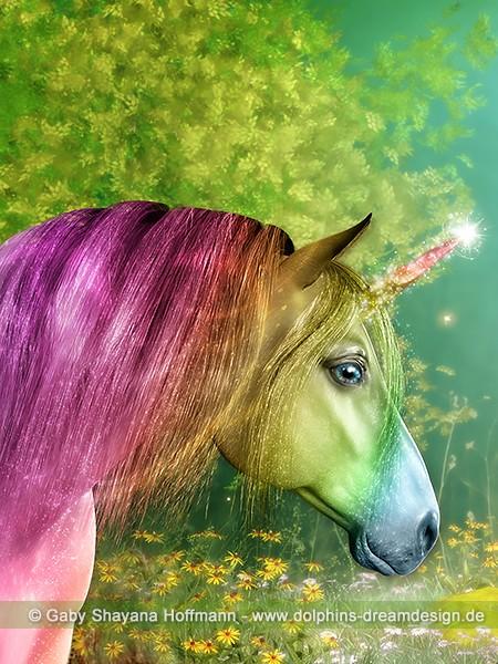 Einhorn - Regenbogenwünsche