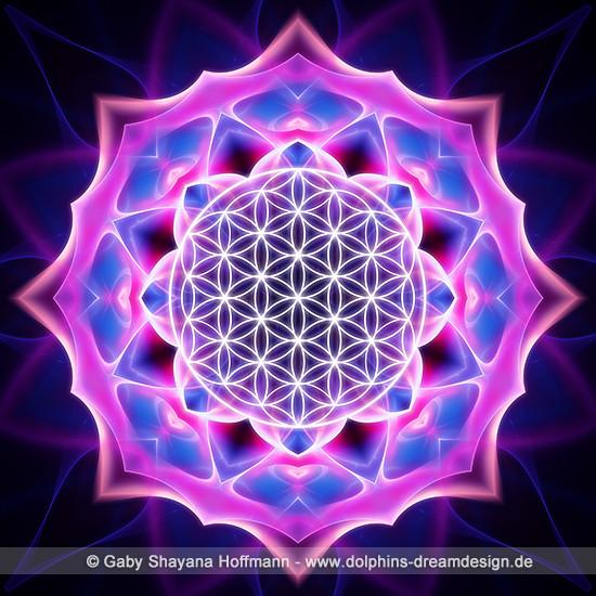 Blume des Lebens - Spirituelles Erwachen