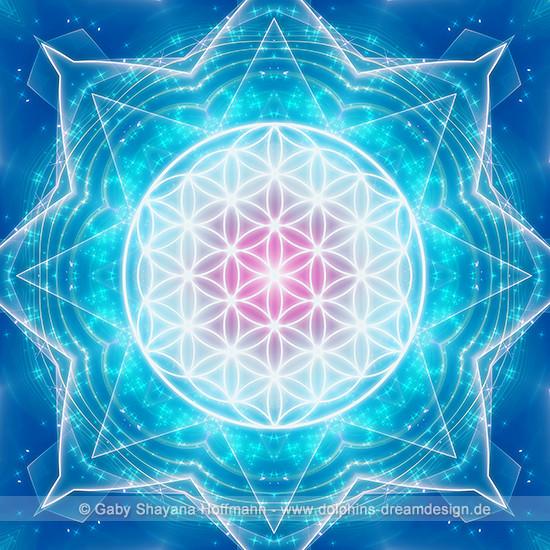 Blume des Lebens - Multidimensionalität