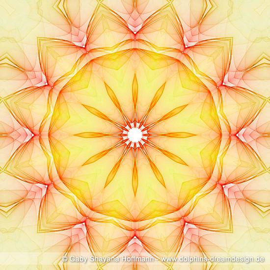 Spirit Mandala - Essenz