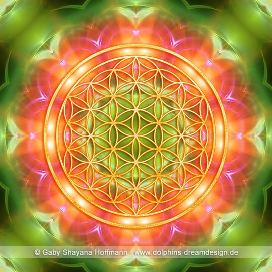 Blume des Lebens - Heilende Herzkraft