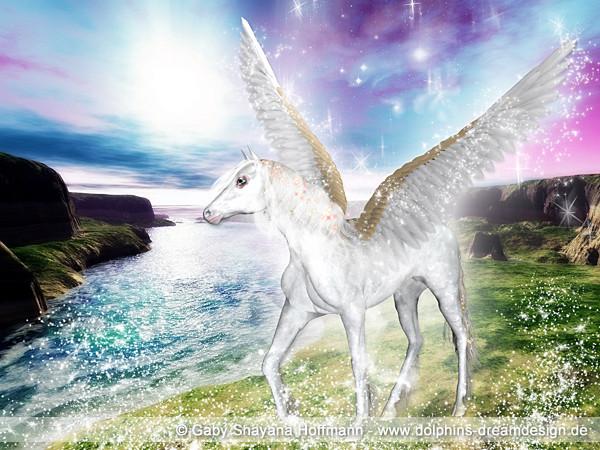 Pegasus Hiladriel