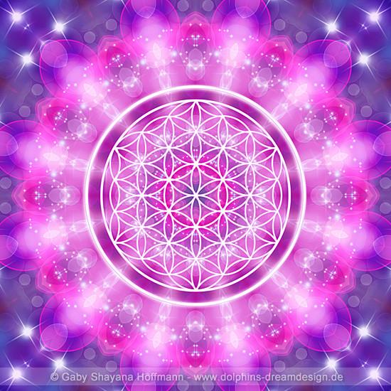 Blume des Lebens - Liebesessenz