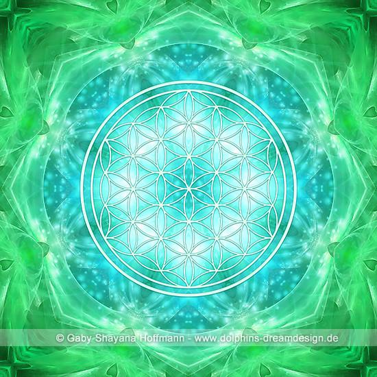 Blume des Lebens - Universelles Bewusstsein