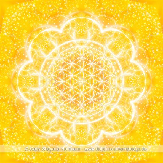 Blume des Lebens - Lichtkraft