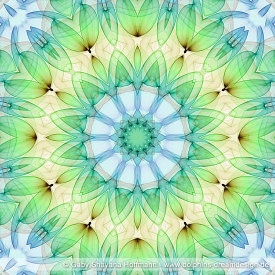 Spirit Mandala - Gesundheit