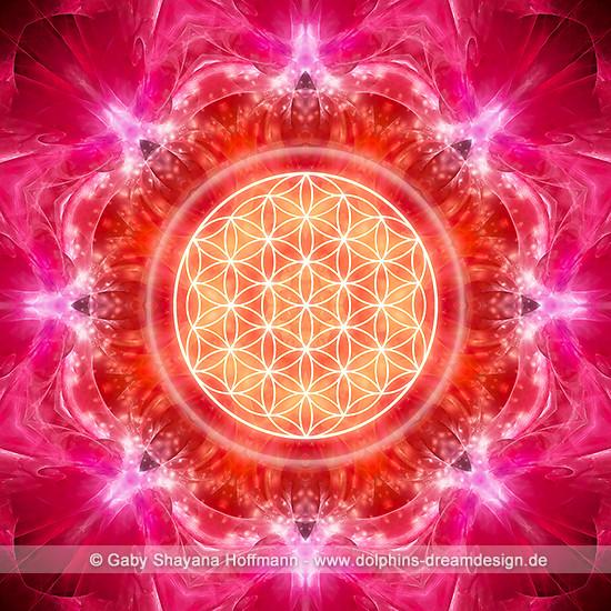 Blume des Lebens - Kraft und Energie
